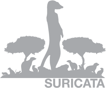 Snort and Suricata xbits implementation